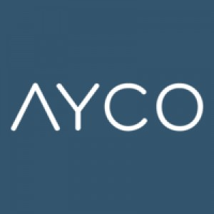 Ayco Company